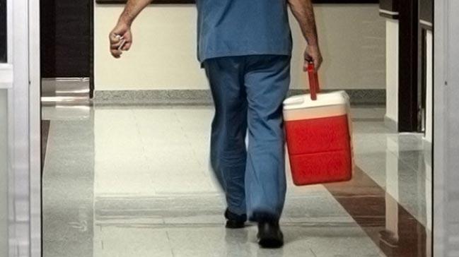 Organ bağış haftası
