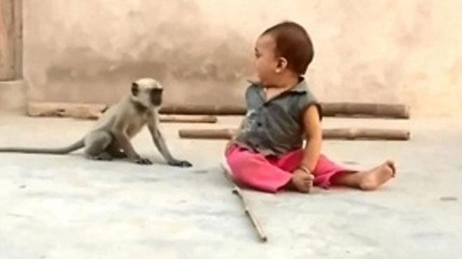 Sevimli maymunun minik çocukla oynamak istediği anlar izleyenleri güldürdü