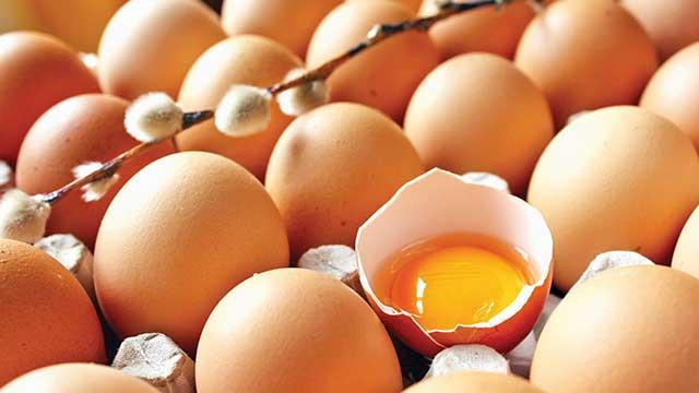 1.5 aydır inceleniyor,yumurtalar temiz!