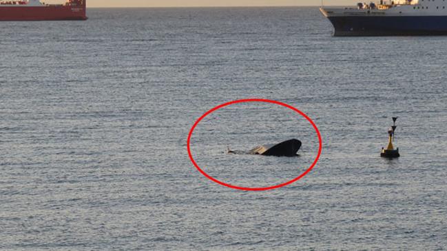 Beylikdüzü Kavaklı Sahili açıklarında bir tekne battı