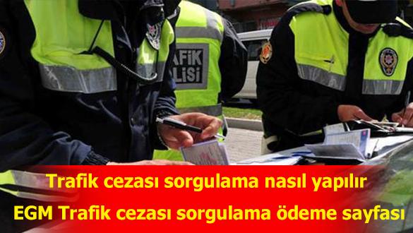 EGM Trafik cezası sorgulama ödeme sayfası