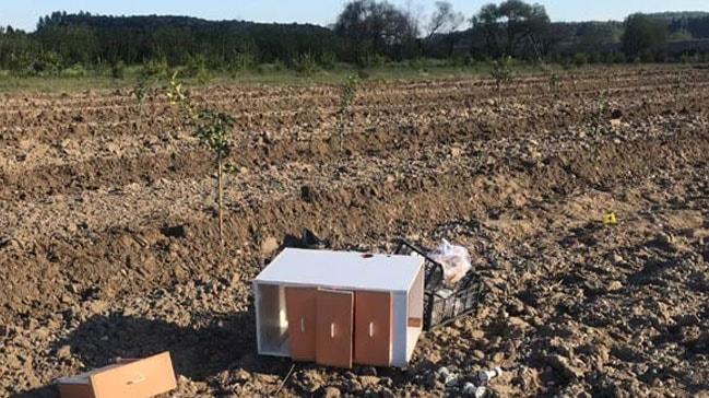 Antalya'da arazi anlaşmazlığında kan aktı: 2 kişi ölü, 1 kişi yaralı